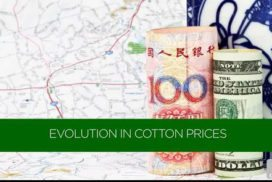 Evolution in Cotton Prices